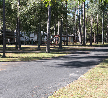 Florida Campground with Shaded Campsites